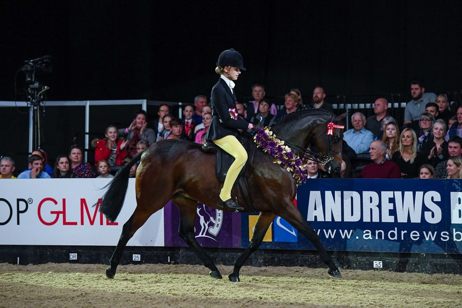 Roseberry Final Edition and Ellie Mae Harrington are children's riding pony of the year champions at HOYS 2021