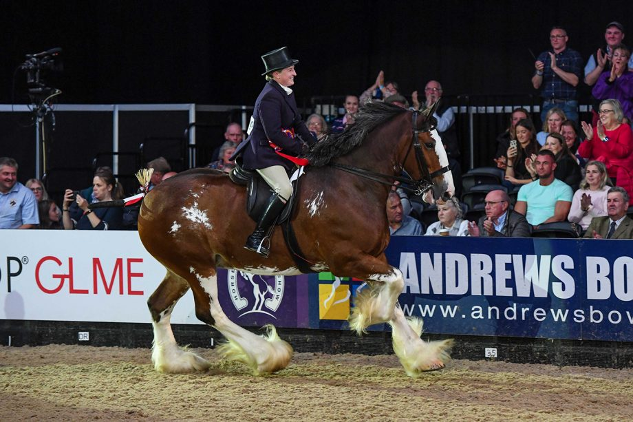 Glenside Matthew's Flower Of Scotland and Kirsty Aird win the ridden heavy horse title at HOYS 2021