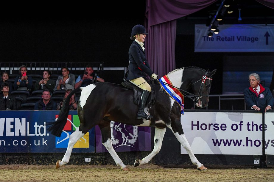LOSTOCK UP TO DATE owned by Ms Sarah Harrison is champion ridden coloured at HOYS 2021