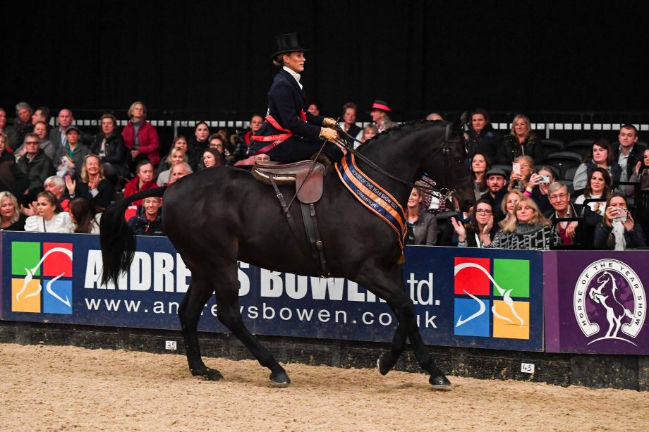 Seabourne Silent Valley wins the HOYS ladies show horse title