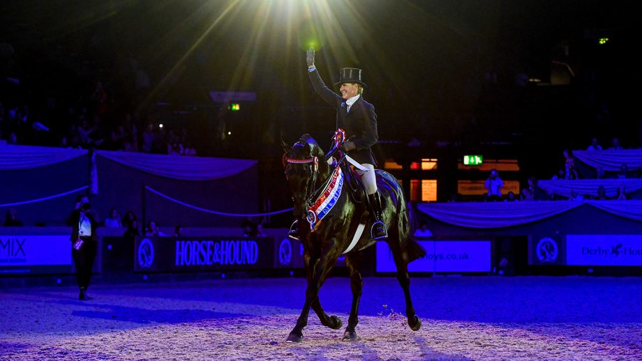 Forgeland Hyde Park, winner of the hack championship at HOYS 2021.