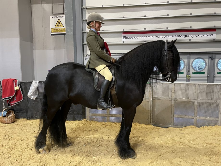 Katy Marriott-Payne and Tarbarl Major Tom land the Dales title at Horse of the Year Show 2021
