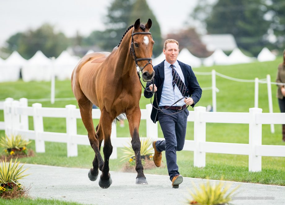 Maryland 5 Star dressage times: Oliver Townend and Cooley Master Class at the first trot-up