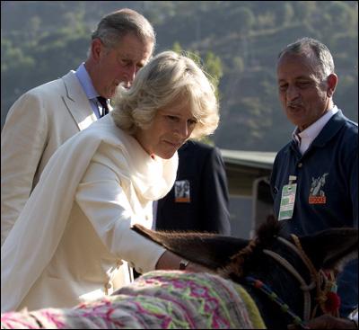 """Duchess"