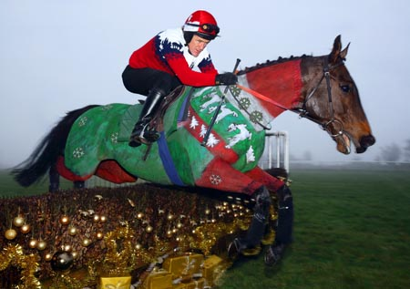 Jockey and mount then jumped a training fence on the gallops that had been  decorated specially with tinsel, baubles and presents. - AP McCoy Dons A Christmas Jumper On A Christmas Jumper - Horse & Hound