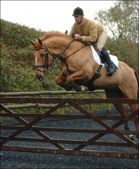 Geoff Luckett enjoys jumping Louise Bell's champion working hunter Cruise Control