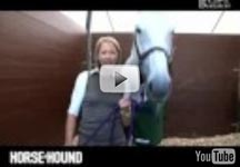 Burghley Horse Trials video blog