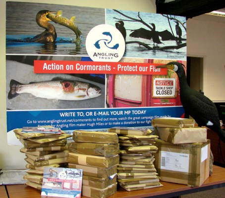 Mountain of mail - our cormorant campaign is gathering even more momentum.