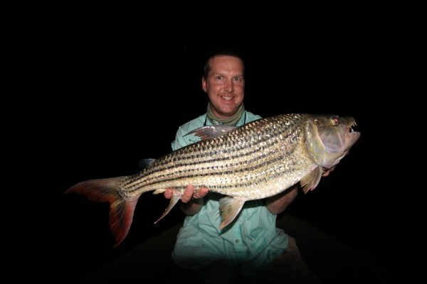 Stu Walker shows one of the giant tigerfish he caught in Zambia. Video below!