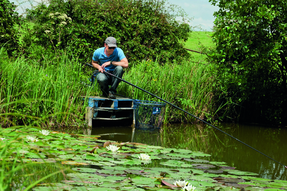 If fishing near lilies you don't want to be undergunned - get those fishes' heads turned quickly!