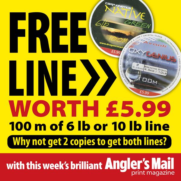 AM free line square