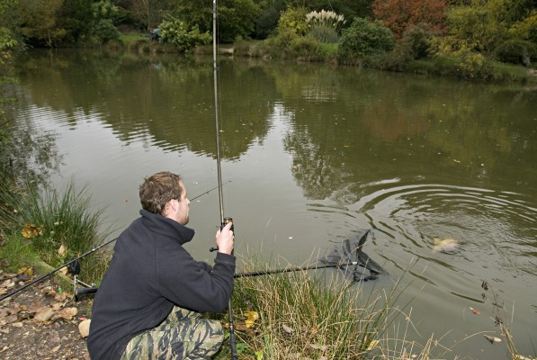 How To Catch More Carp In September And October Angler 39 S