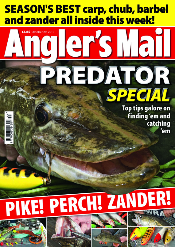 Be sure to get this week's brilliant new issue of Angler's Mail magazine! It's in shops from Tuesday, October 29.