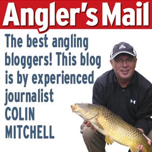 Blog Mitch