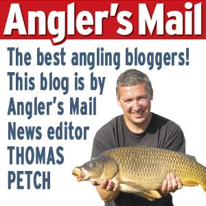 Blog-Thomas