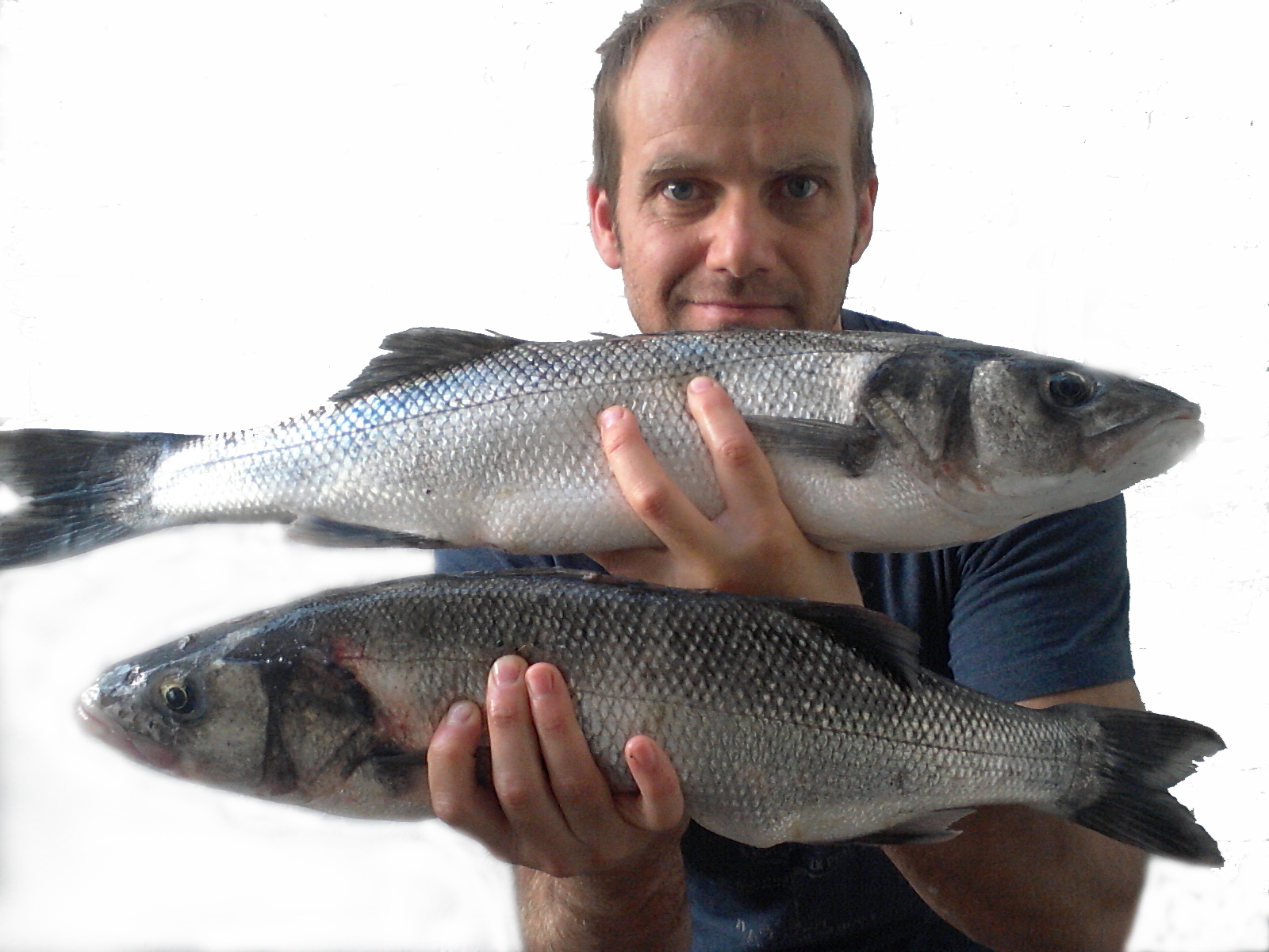 Top tips for autumn bass fishing for Bass fishing tips