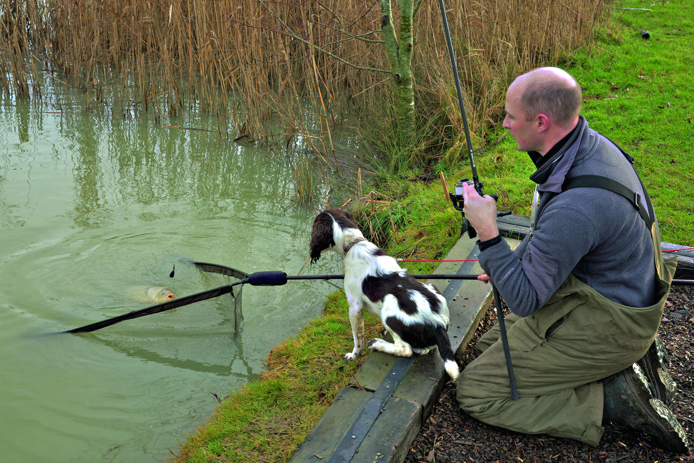 Dog Friendly Fishing Lakes In South