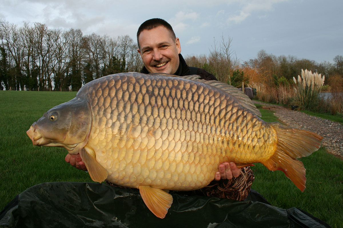 Big carp end year in style for Carp fish pictures