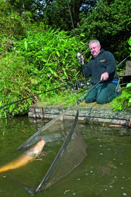 Masterclass 7 is about to be released! | News | Korda