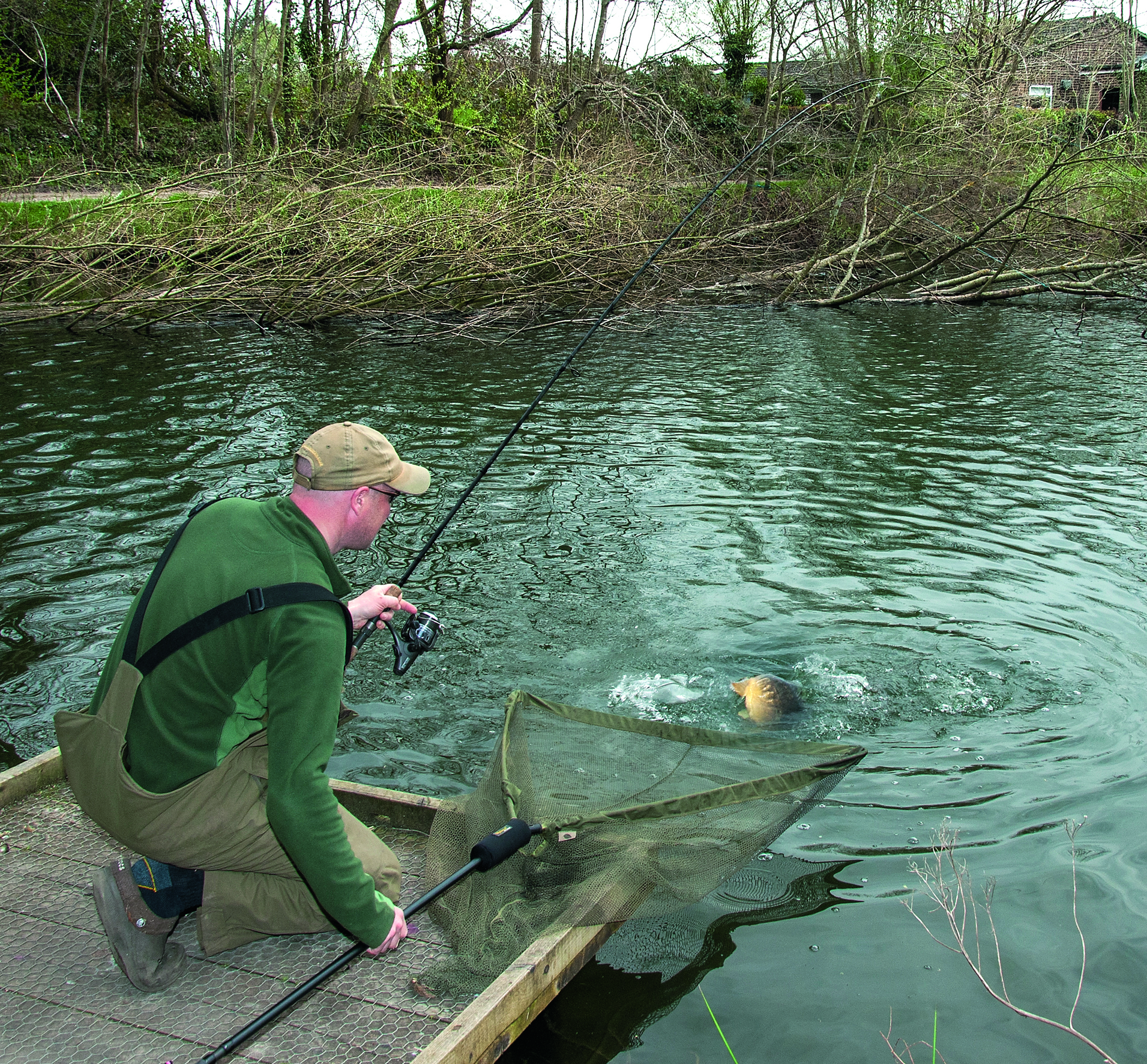 Winter carp tips