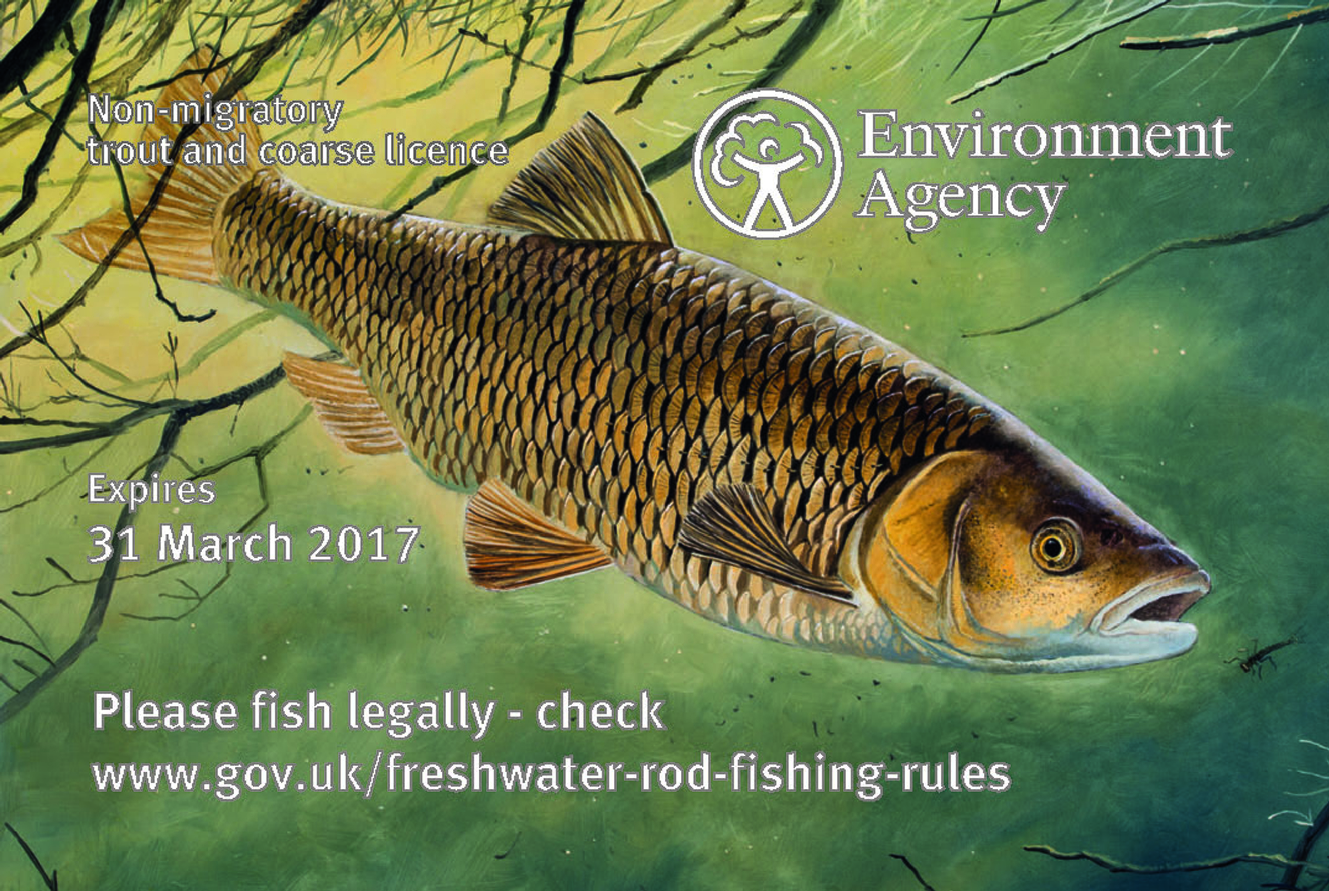 New rod licence prices revealed angler 39 s mail for Where to get a fishing license