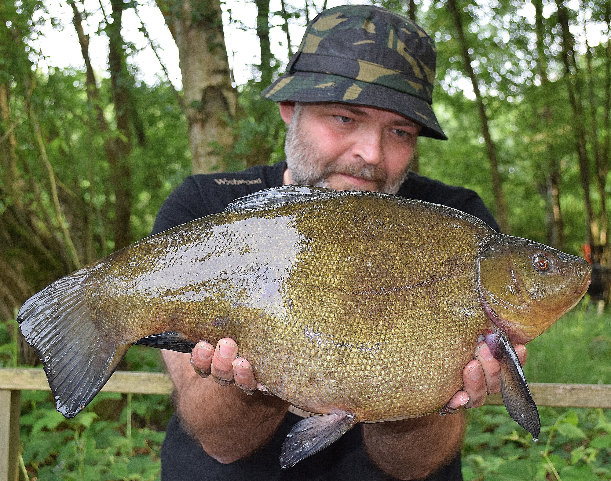 Big Rigs For Sale >> Biggest tench of the year - Angler's Mail