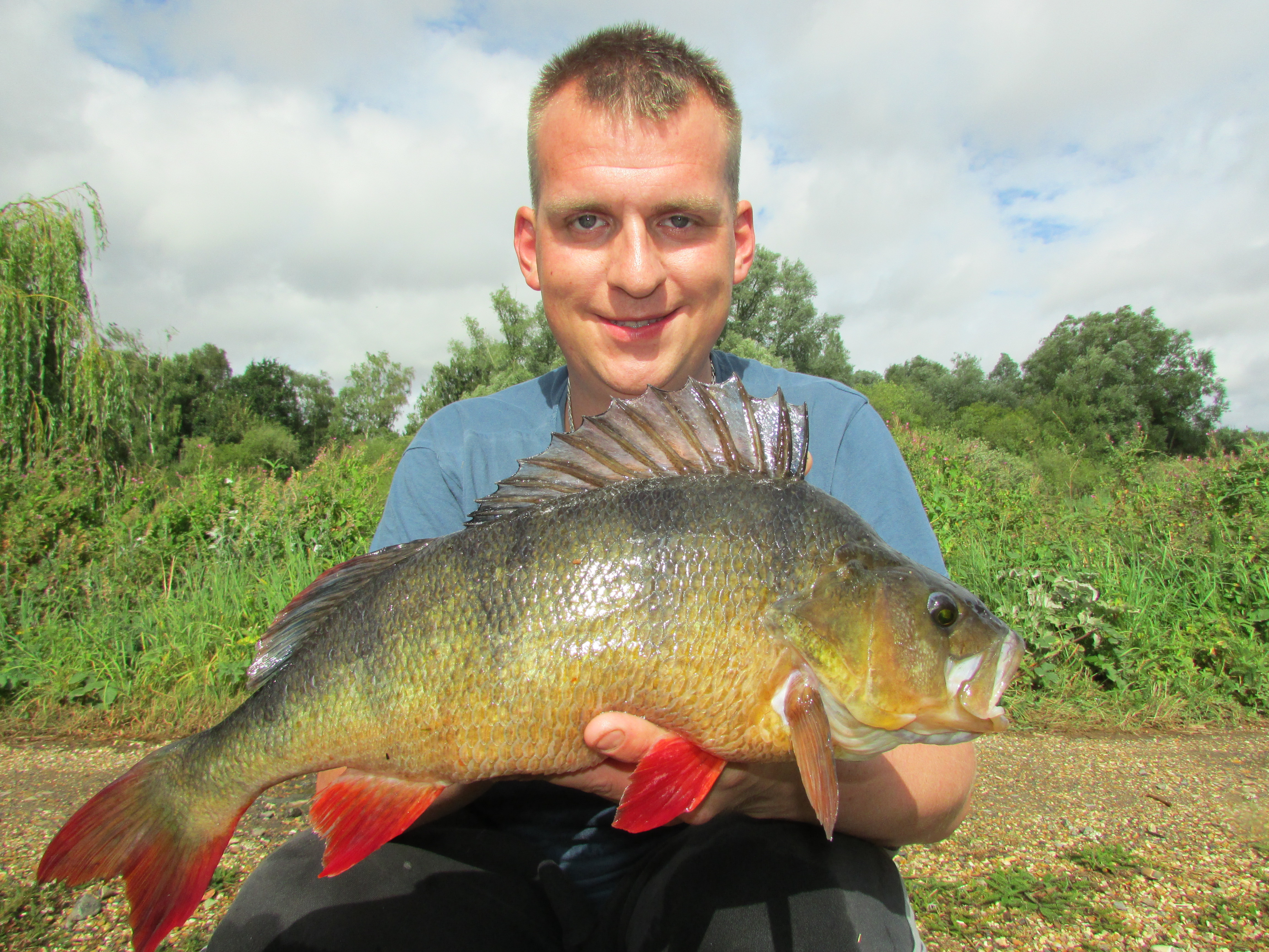 Monster summer river perch angler 39 s mail for Best days for fishing