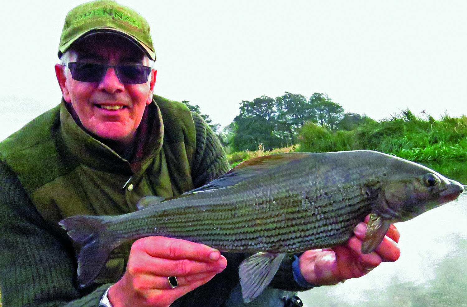 big-grayling.jpg
