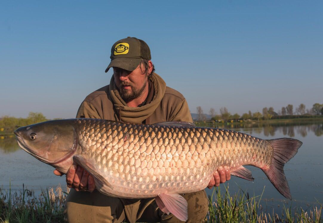 World record carp lake's other monster fish! - Angler's Mail