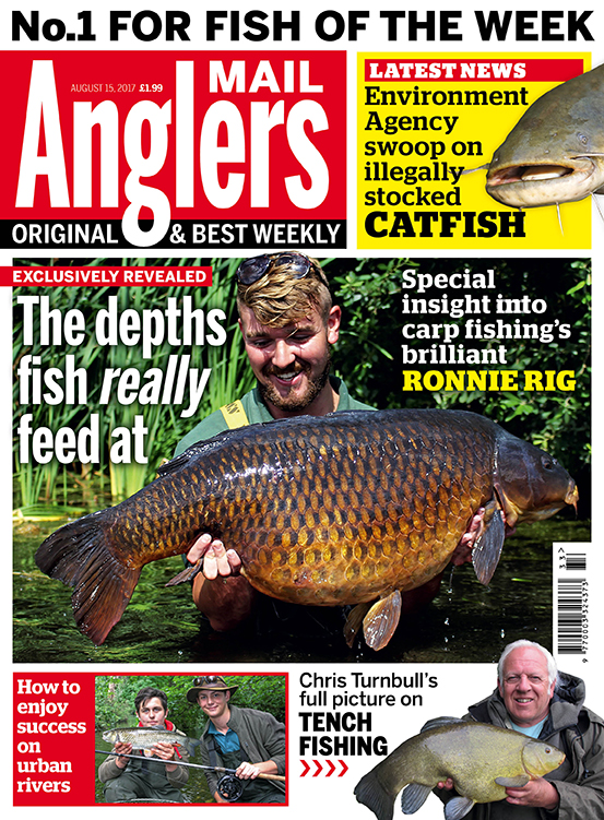 Revealed by Angler's Mail: depths fish really feed at ...