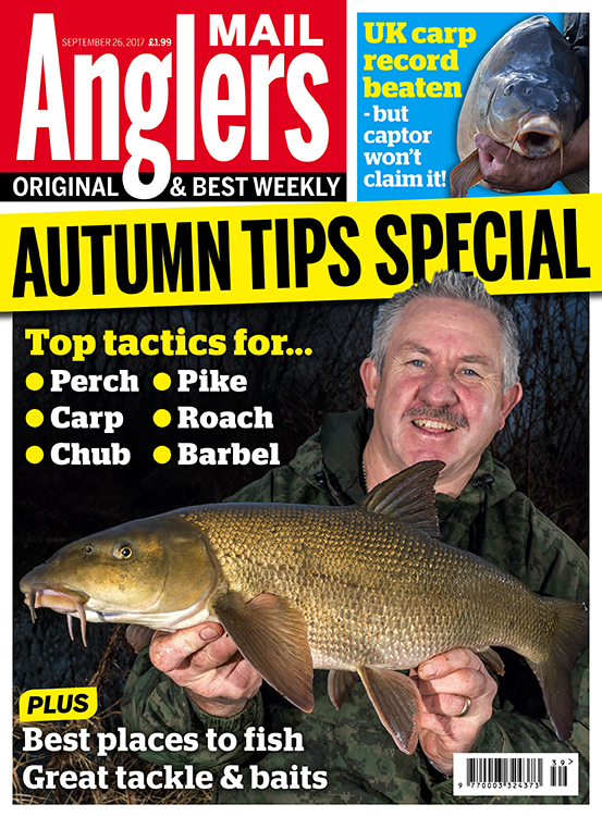 British carp record <b>Beat</b>en, Autumn Tips Special and lots more with ...