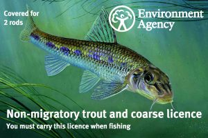 The 2018 annual rod licence features a gudgeon.