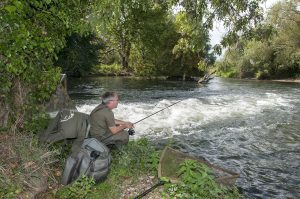 A petition to scrap the river fishing Close Season was launched online.