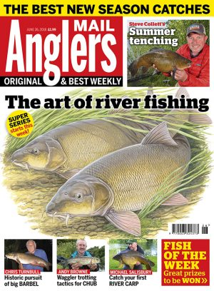 Best Exclusive Carp and Catfish Fishing Holidays in France at ...