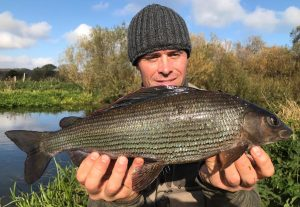 Grayling-main-300x207.jpeg