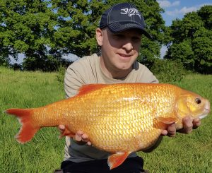 Lawrence King's golden orfe of 8 lb 5 oz was accepted as an equal record.