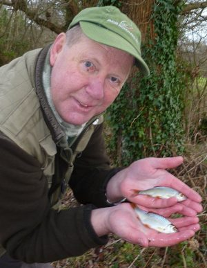 These small Hampshire Avon roach, held by Trevor Harrop are a sign of real progress for the river.