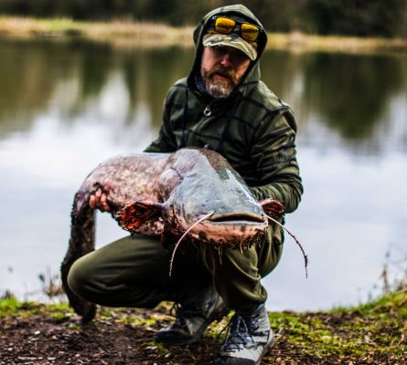 Giant catfish landed on ultra-light tackle
