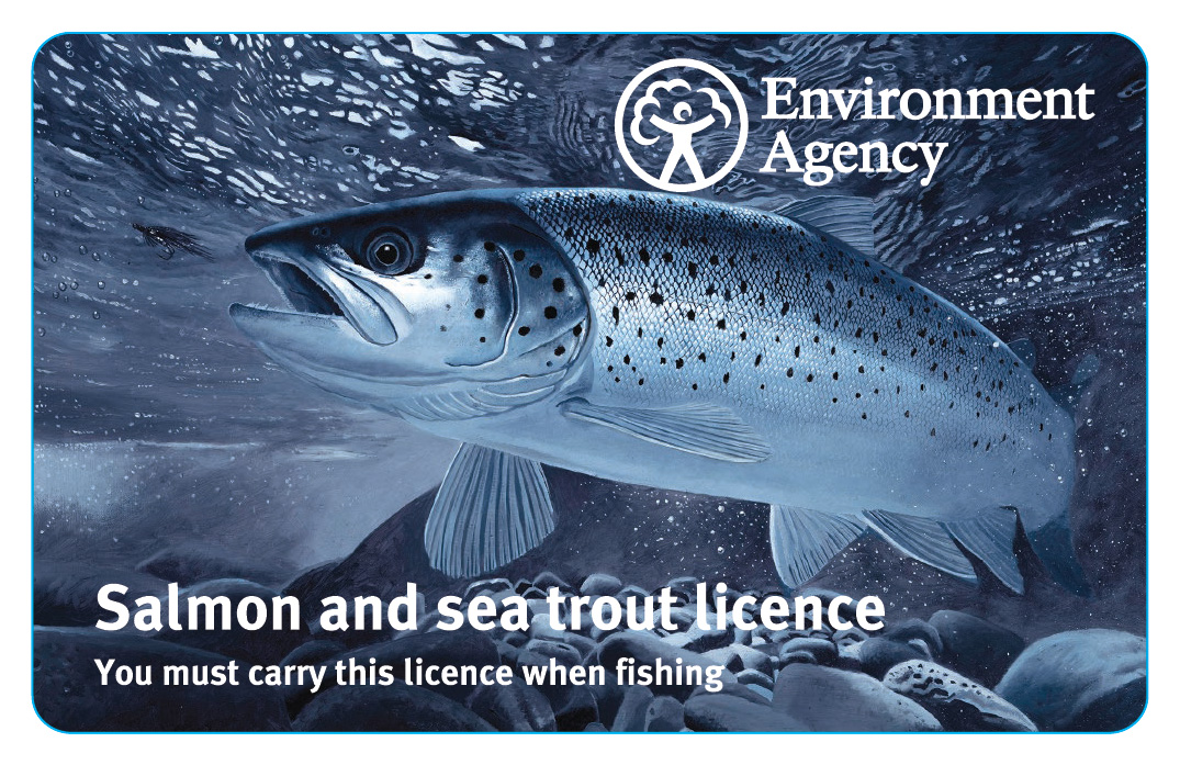 This sea trout graces the cover of new migratory species fishing rod licences.