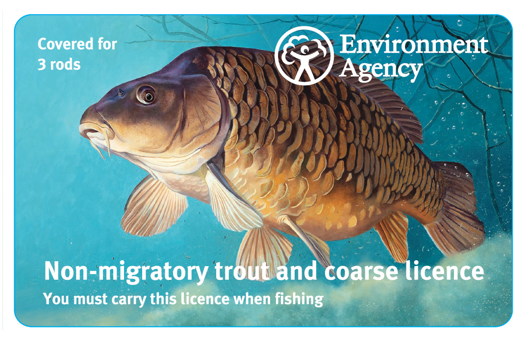 Fishing rod licences for carp and other three-rod users have this carp image for 2019.