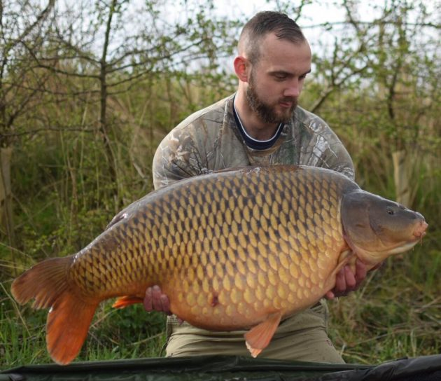 Day ticket carp is certainly not a run of the Mill <b>Catch</b>