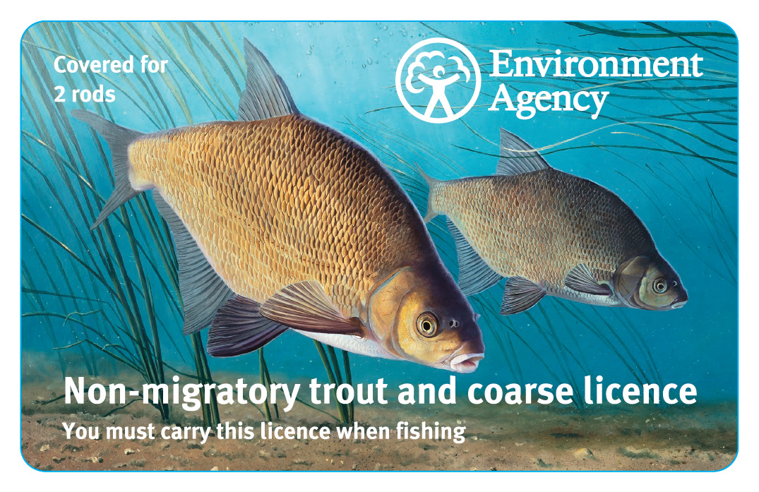 This year's fishing rod licence for coarse fish and non-migratory trout. It allows up to two rods, and there is a three-rod option mainly aimed at carp anglers.