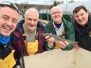 Just one of the many stock fish produced at Calverton Fish Farm.
