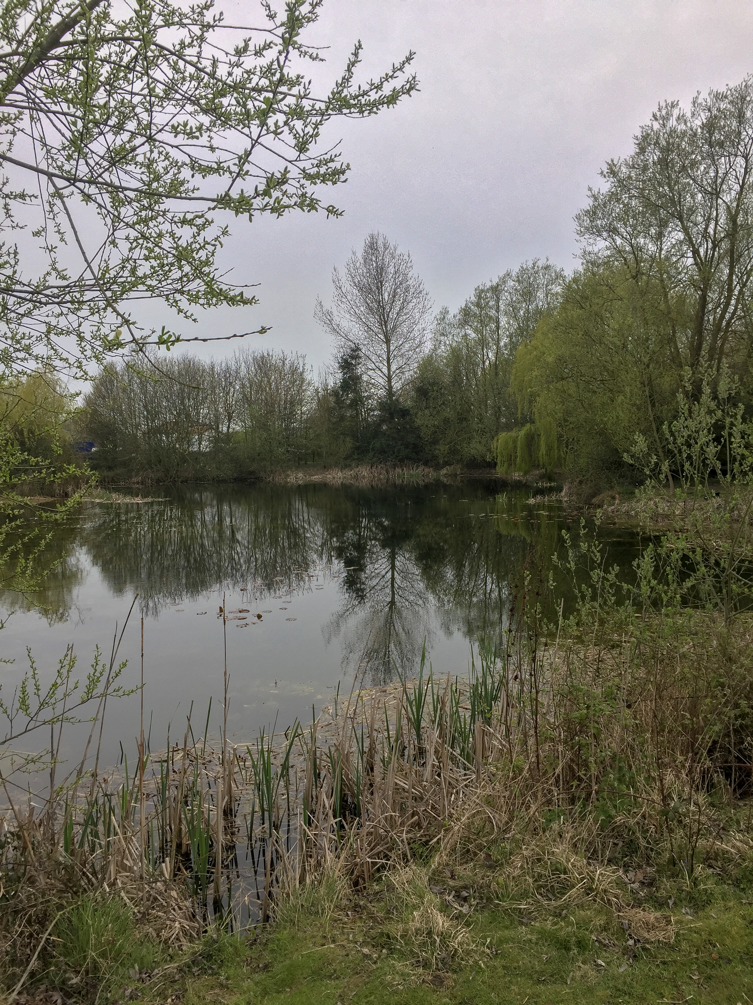 Spitfitre is no easy lake - and the common carp Simon Crow tempted had eluded capture for two years.