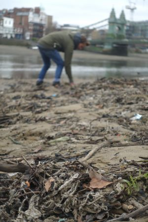 Thames21 have been cleaning up the River Thames around London.