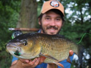 Robbie Northman had this 6 lb 5 oz specimen chub on the fly.