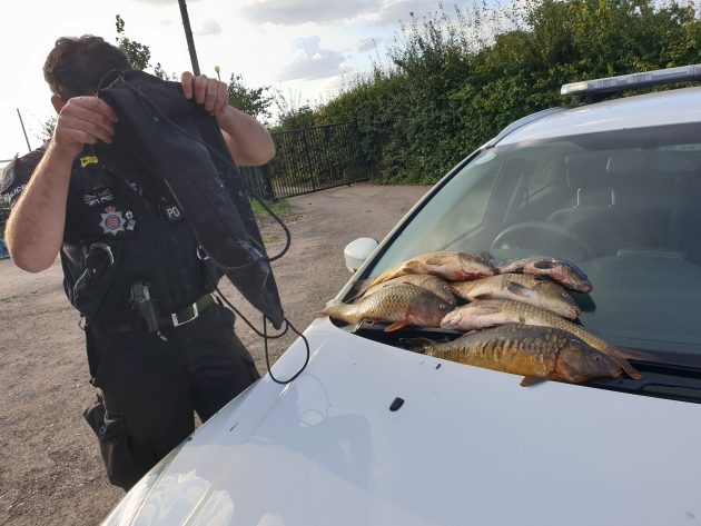 Some of the Maybrands carp on the bonnet of a Police car.