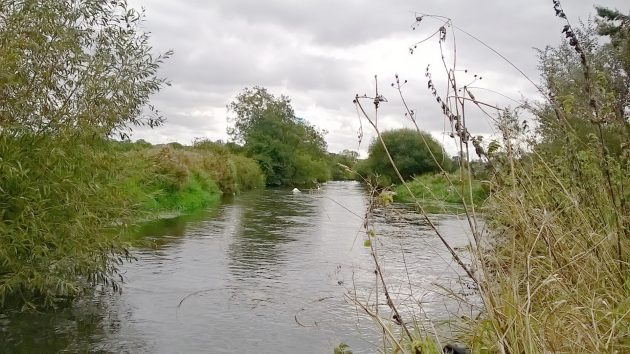Reading DAA control long stretches of the River Kennet.