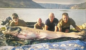 The mandarin catfish from the River Segre set a new European record.