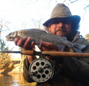 Mark got his hands on big grayling from the River Irfon.
